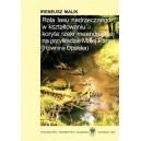 Rola lasu nadrzecznego w kształtowaniu koryta rzeki meandrującej na przykładzie Małej Panwi (Równina Opolska) - IRENEUSZ MALIK