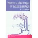 Przemysł na Górnym Śląsku i Zagłębiu Dąbrowskim w XIX i XX wieku. Wybrane zagadnienia