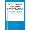 Modelowanie procesów ekonomicznych. Wybrane zagadnienia