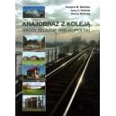 Krajobraz z koleją. Drogi żelazne Wielkopolski - Balińska G.M., Baliński J.A., Balińska D.