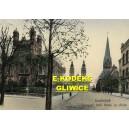 Oppeln — Partie am Schloßteich mit Synagoge und Eishaus. Opole Synagoga